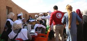 ООН предоставя хуманитарна помощ за 650 000 сирийци