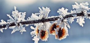 Посрещаме астрономическата зима със сняг