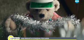 НАЙ-МИЛАТА КОЛЕДНА РЕКЛАМА: История за влюбени мечки (ВИДЕО)