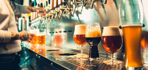 Жителите на ЕС консумират по 140 халби бира годишно