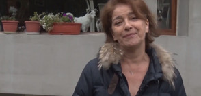 """Сезонно празнично меню с Катето Евро в """"Черешката на тортата"""""""