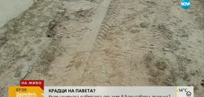 Къде изчезнаха паветата от алея в Борисовата градина?