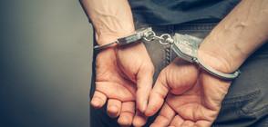 Двама души са арестувани за кражбата на картини на Майстора