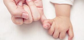 Чревните бактерии у родените със секцио са свързани с болничната среда