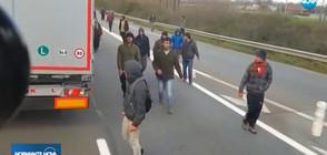 Шофьори: Имигрантските атаки в Кале са ежедневие