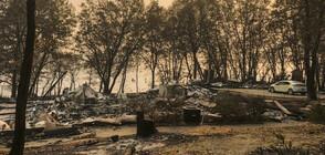Природните бедствия през 2018 г. са взели над 10 000 жертви