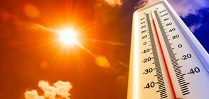 48,9 ГРАДУСА! Рекордни жеги в Австралия