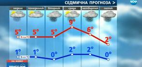 Прогноза за времето (19.01.2019 - централна)