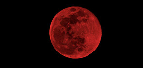 Наблюдавахме първото пълно лунно затъмнение за годината (ВИДЕО+СНИМКИ)