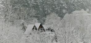 Снежна пелена покрива части от страната