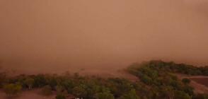 Силна пясъчна буря удари Нов Южен Уелс (ВИДЕО)