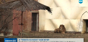 """В """"ТЕМАТА НА NOVA"""" ОЧАКВАЙТЕ: За бракониерството, трафика и изоставянето на животни"""
