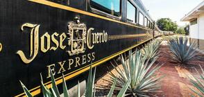 В тематичен влак пътниците се наливат с текила до насита