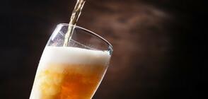 Пивоварна в Ню Йорк иска да прави нова бира по 133-годишна рецепта