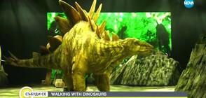 Грандиозно шоу с истински динозаври в София (ВИДЕО)