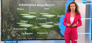 Прогноза за времето (17.02.2019 - централна)