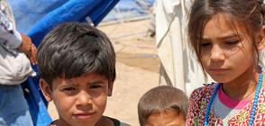 Алдар Халил: Европа не бива да изоставя кюрдите