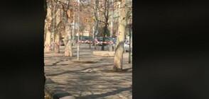 Забравен кашон затвори подлеза на Софийския университет (ВИДЕО)
