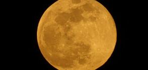 """ОТ """"МОЯТА НОВИНА"""": Супер Луна в небето над България (ВИДЕО+СНИМКИ)"""
