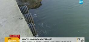 Изхвърлят ли се опасни течности в река Дунав?
