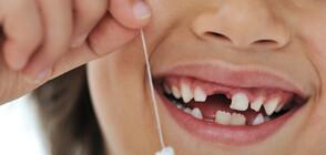 Изваден млечен зъб на 10-годишно дете постави световен рекорд