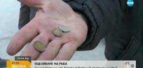 ОЦЕЛЯВАНЕ НА РЪБА: Защо работници от Мездра живеят с 14 стотинки на ден?