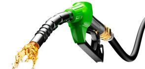 Службите засекли милиони укрити данъци от търговия с горива