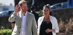 Астроложка: Бебето на принц Хари и Меган ще бъде дръзко