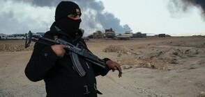 """""""Ислямска държава"""" е разработила цяла онлайн методология за вербуване"""