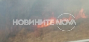 """Пожар край магистрала """"Тракия"""""""
