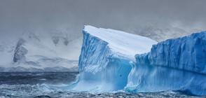 Айсберг, 15 пъти по-голям от територията на Париж, се откъсна от леден шелф в Антарктика