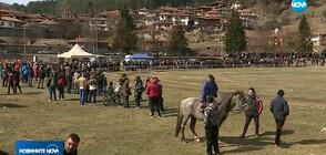 На Тодоровден: Кои бяха най-бързи на кушията в Копривщица?