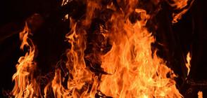 Огромен пожар в химически завод в Тексас (ВИДЕО)