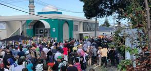 Жива верига около джамия в Нова Зеландия за петъчната молитва (ВИДЕО+СНИМКИ)