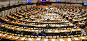 ПЛЮС-МИНУС ЗА ЕВРОПА: Как евродепутатите си докарват допълнителни доходи?