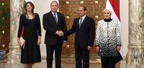 Радев в Египет: София и Кайро с общи мерки за борба с тероризма (СНИМКИ)