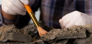Неохетски йероглифи на 3 500 години са открити в плевня в Кападокия