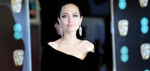 Анджелина Джоли може да заеме държавна длъжност