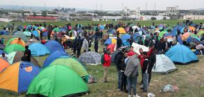 Анализатори: Основната причина за мигрантската вълна към ЕС е войната в Сирия