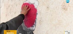 Кой унищожи рисунките по сградите в Старо Железаре?