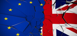 Организираха 28 информационни дни за правата на българите във Великобритания след Brexit