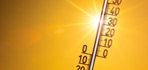 Много топло време в началото на следващата седмица