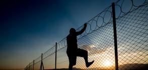 Хванаха избягал затворник край Смолян