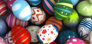 ШАРЕНО: Нестандартни техники за боядисване на яйца (ГАЛЕРИЯ)