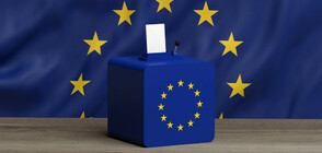 Две социологически проучвания дават преднина на БСП пред ГЕРБ за евровота