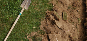 В Англия откриха масов гроб от преди 3000 години
