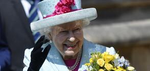 Британската кралица - на пазар (ВИДЕО+СНИМКИ)