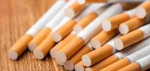Митнически служители задържаха над 900 000 къса цигари