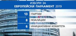 БИТКАТА ЗА ЕВРОВОТА: Кой на кого залага за изборите за ЕП?