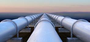 Чехия преустанови вноса на руски нефт през Беларус
